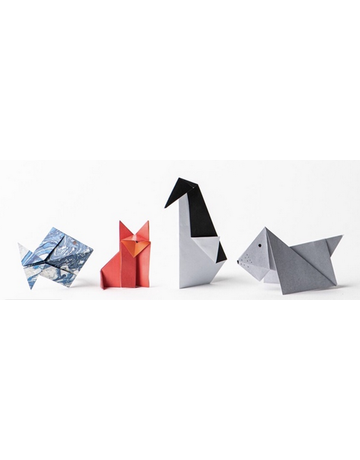 Eco Kids Eco Kids - Magic Oragami Kit
