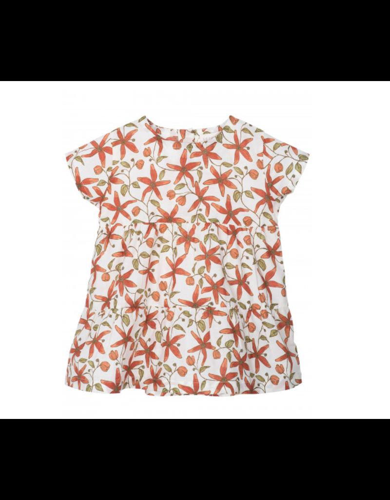 Serendipity Baby Flair Dress