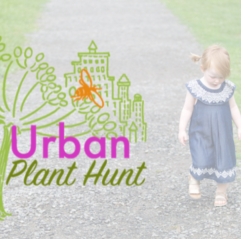 Urban Plant Hunt #2: Enos Jones Park