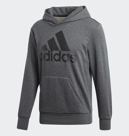 ESSENTIAL LINEAR PULLOVER HOODIE MEN GREY