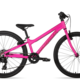 Norco Storm 4.3 rose