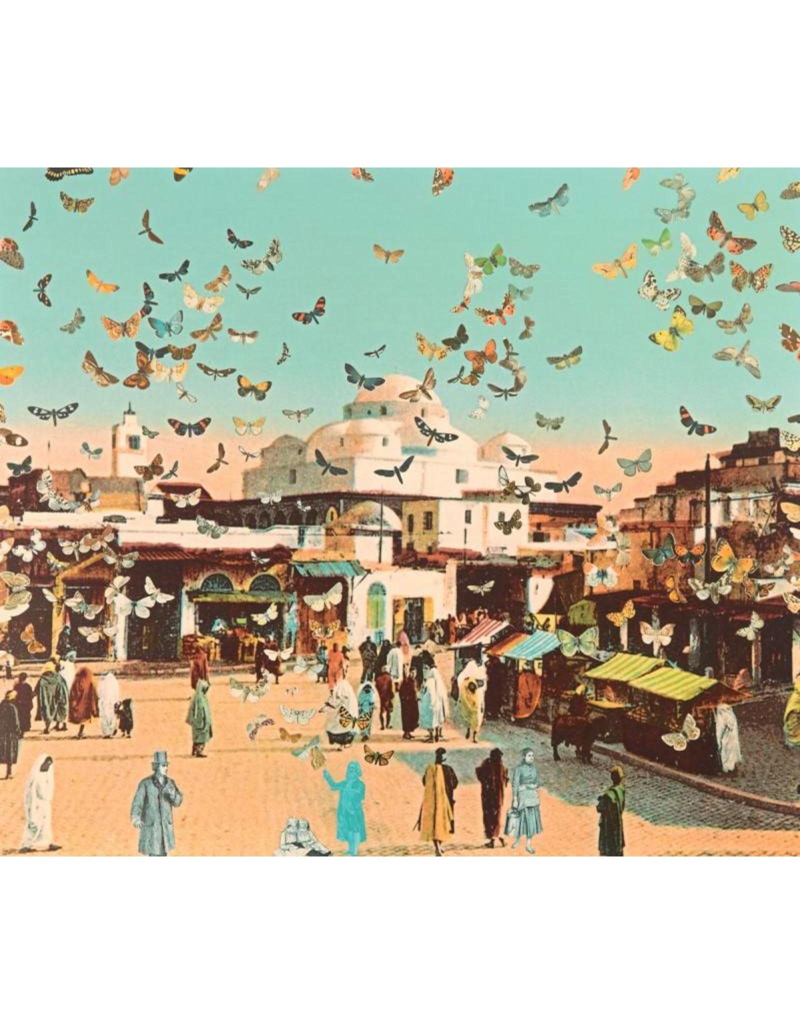 Butterfly Man in Tunis