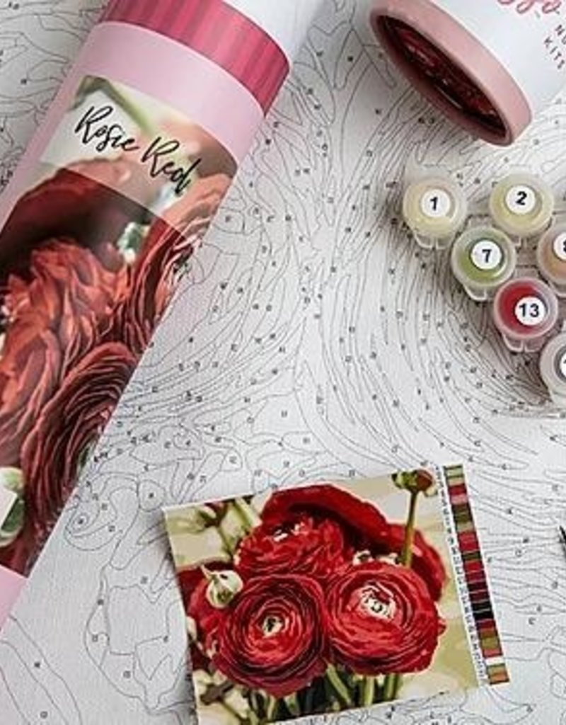 pink picasso Paint By Numbers Kit Rosie Reds