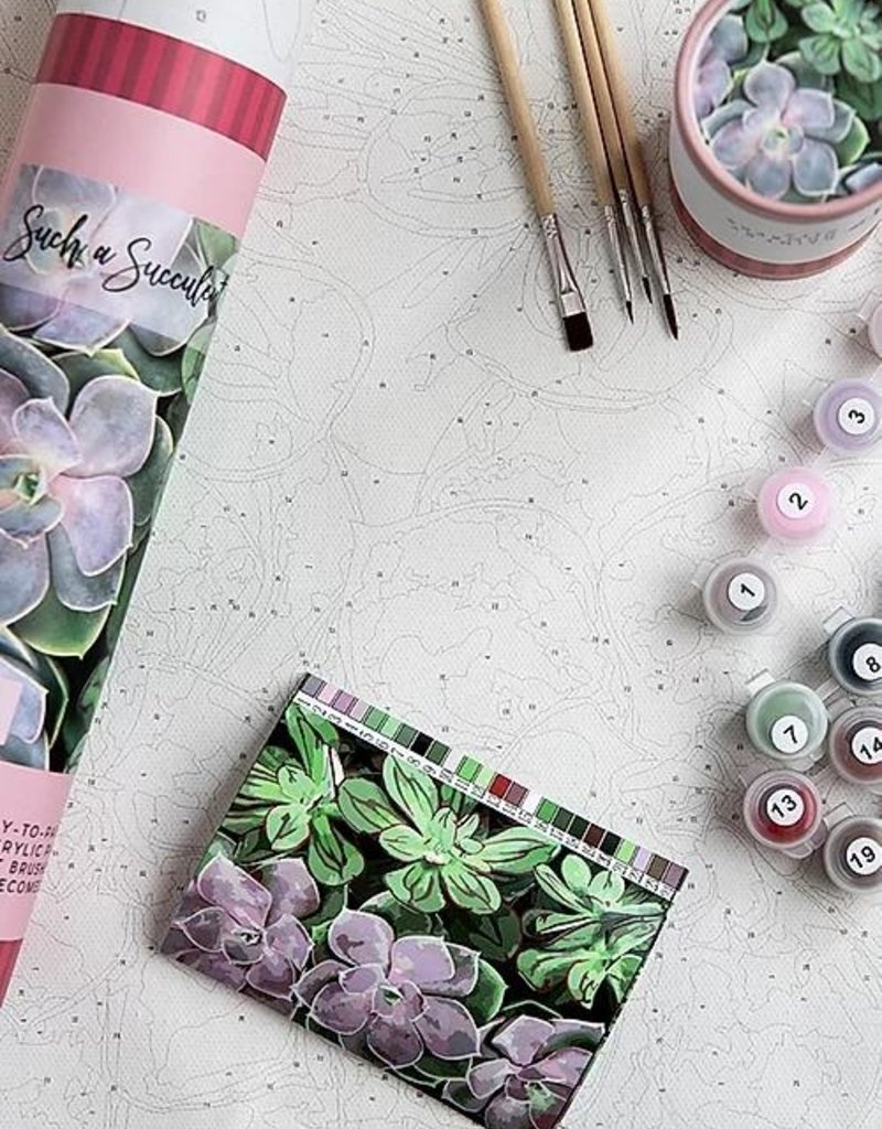 pink picasso Paint By Numbers Kit Such a Succulent