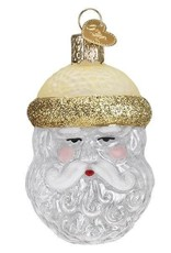 Old World Christmas Crystal Santa Ornament