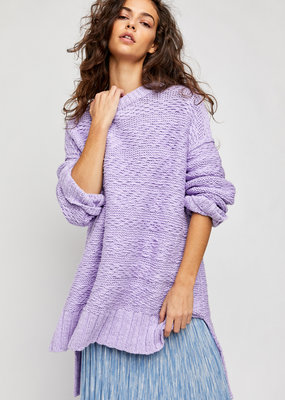 Free People Sparrow Sweater