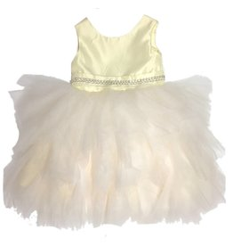 Fancy Tulle Dress