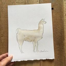 Léolia Art et Illustrations Léolia - Aquarelle/Watercolor, Lama\Llama