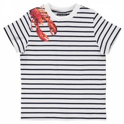 Birdz Children & Co Birdz - Striped Lobster Sweater