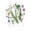 Stéphanie Renière - Greeting Card, Little Peas