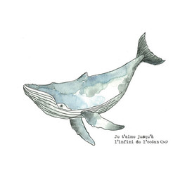 Stéphanie Renière - Greeting Card, Timothée the Whale