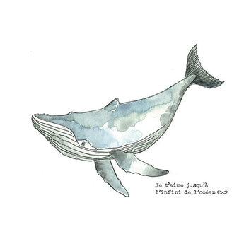 Stéphanie Renière - Greeting Card, Timothée the Whale