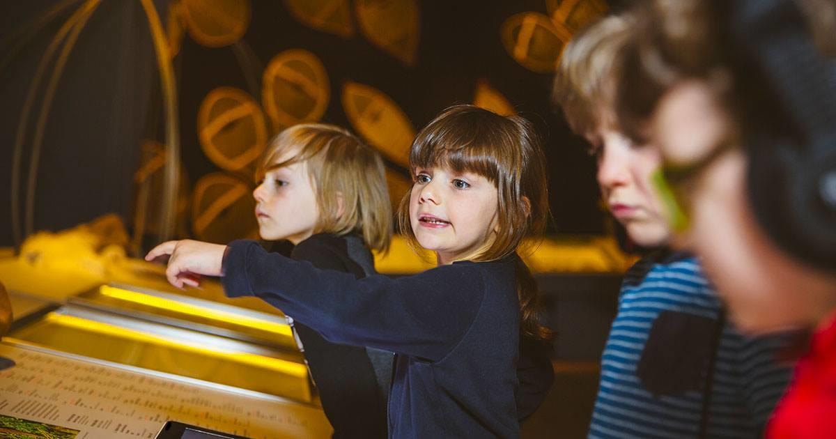 10 expositions à visiter en famille à Québec