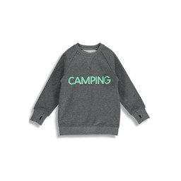 Birdz Children & Co Birdz - Chandail Camping, Gris