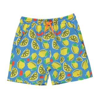 Birdz Children & Co Birdz - Bathing Suit, Blue Lemonade