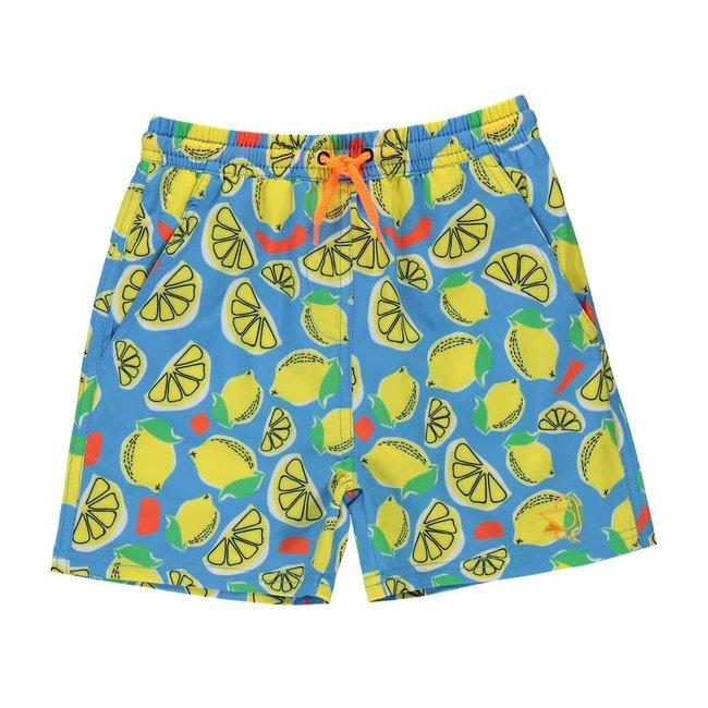 Birdz Children & Co Birdz - Bathing Suit, Blue Lemonade