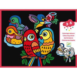 Djeco Djeco - Colouring Velvet, Baby Birds