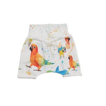 Little Yogi Little Yogi - Short Évolutif, Perroquets