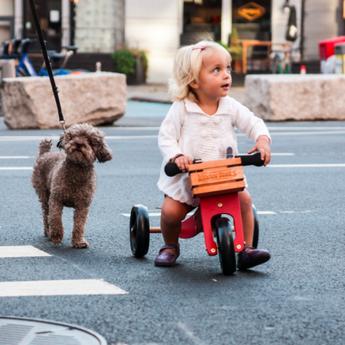 Kinderfeets Kinderfeets - Boîte de Bois pour Vélo d'Équilibre
