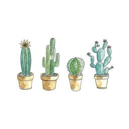 Stéphanie Renière - Carte de Souhaits, Cactus Pépito