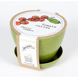 Mano Verde Mano Verde - Minipot Kit, Cherry Tomato