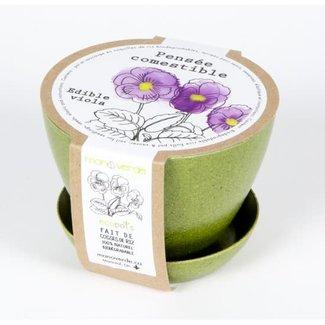 Mano Verde Mano Verde - Minipot Kit, Edible Viola