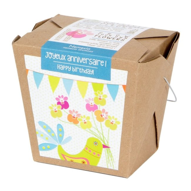 Mano Verde Mano Verde - Wishes Box Garden, Happy Birthday