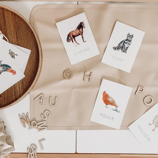 Pastel Pastel - Learning Cards, Farm Animals