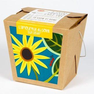 Mano Verde Mano Verde - Junior Box Garden, Sunflower