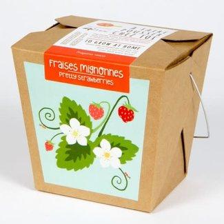 Mano Verde Mano Verde - Junior Box Garden, Strawberry
