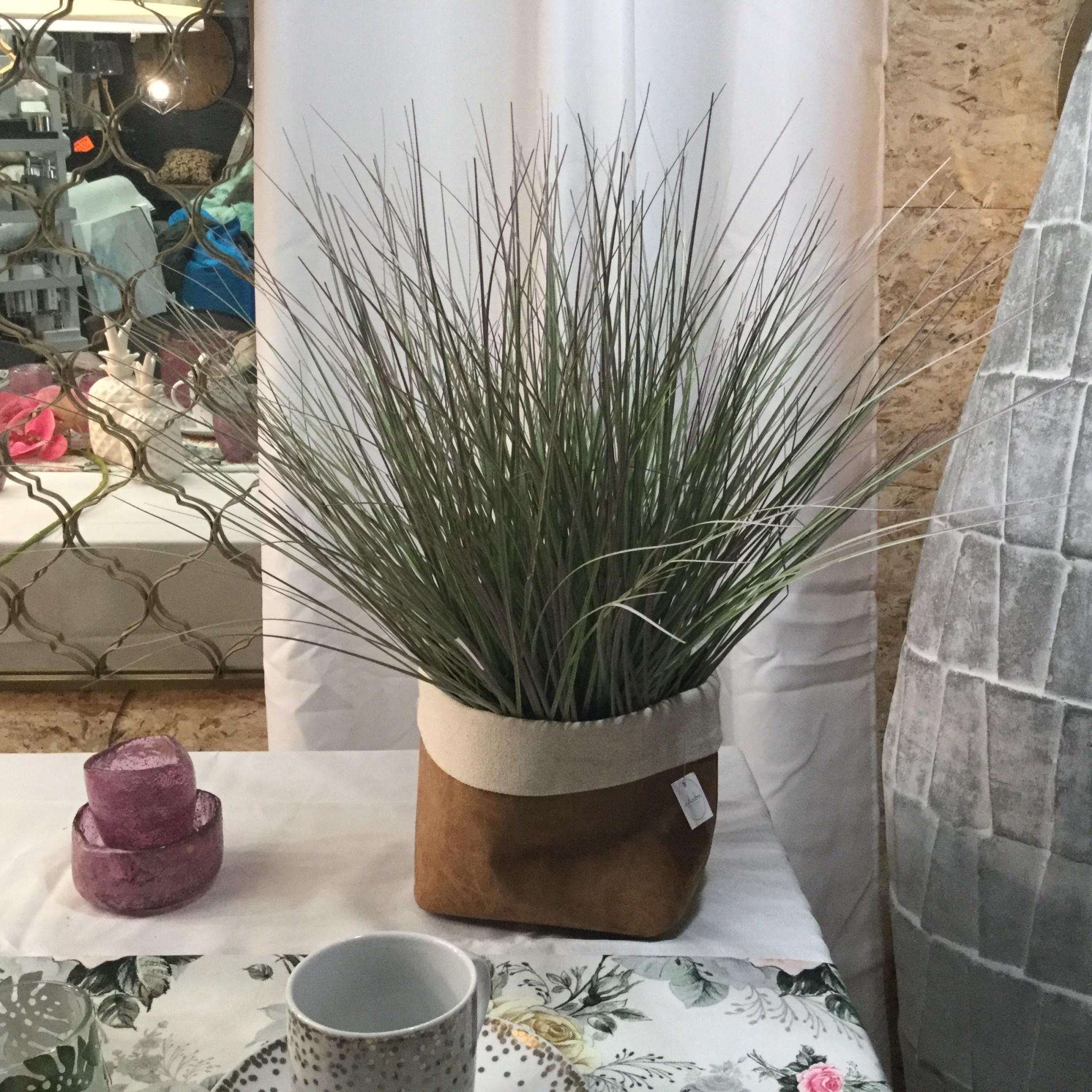 PINK SEASIDE PLANT