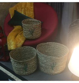 CACTUS BASKETS SET OF 3