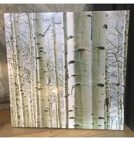 ASPEN FOREST CANVAS SET OF 2