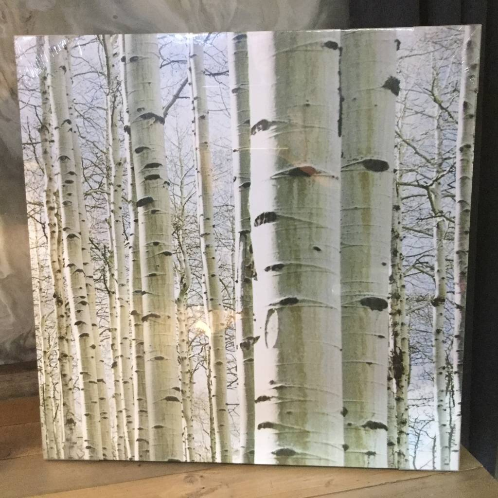 ASPEN FOREST CANVAS SET OF 2