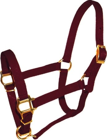 "Triple E 5/8"" Adjustable Mini Halter"