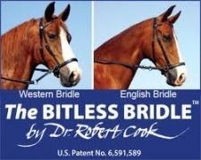 Dr. Cook Dr. Cook Bitless Bridle - Beta