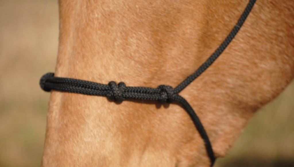 Double Diamond Double Diamond Four Knot Nose Rope Halter