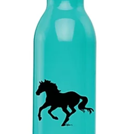 Vacuum Sealed Sports Bottle, Teal