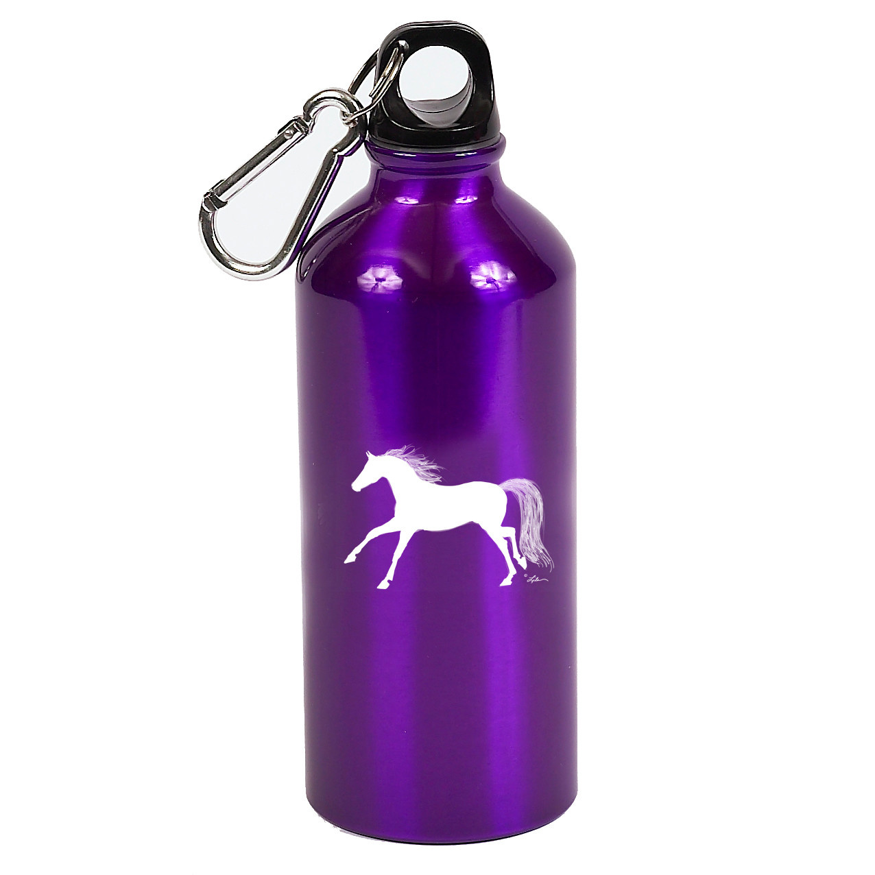 Purple Aluminum Sports Bottle