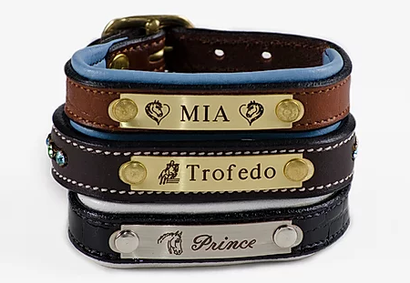 Horse Fare Products Bracelet - Padded Leather with Engraved Plate