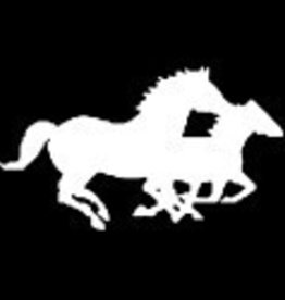 Decal - Mare & Foal Running