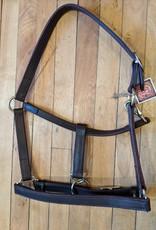 Circle L Circle L Leather Horse Halter - D.Oil
