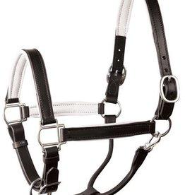 Lamprey Padded Leather Halter - Horse