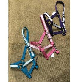 Lamprey Pony/Mini Nylon Halter Various Color