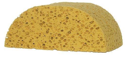 Large Grooming Sponge