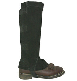 Intrepid Adult Leather Half Chaps with Velcro Closures