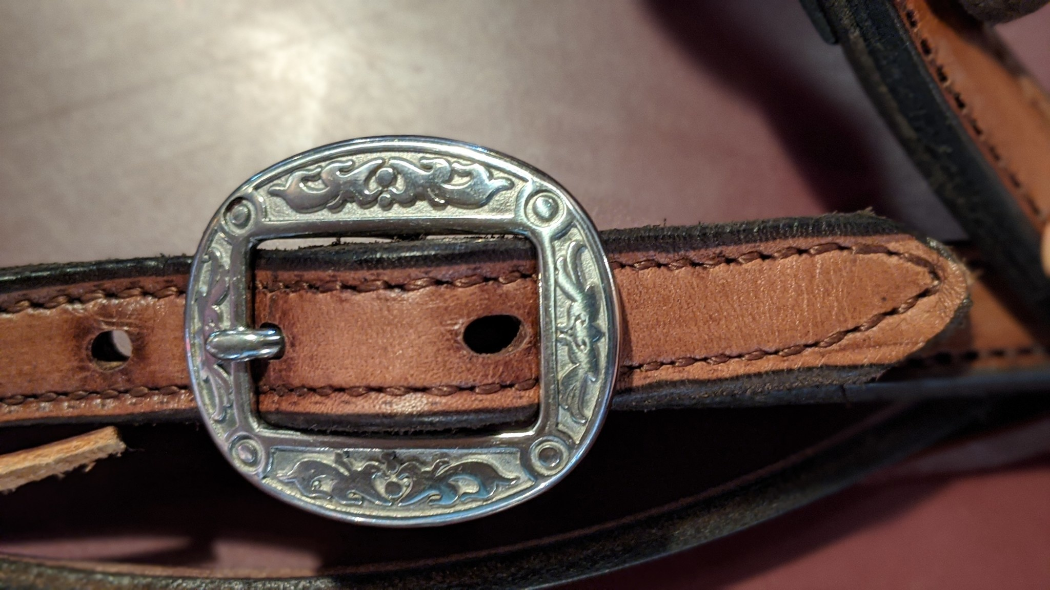 Circle L Circle L Headstall - Straight Brow Barbed Wire with Fancy Buckle