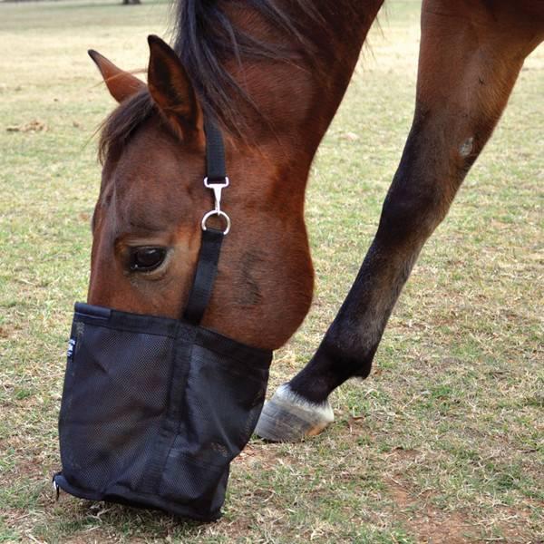 Cashel Feed Rite Bag