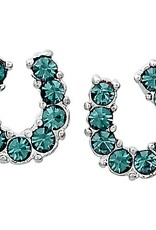 AWST Earrings - Rhinestone Horseshoe