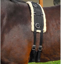 Tough-1 Training Surcingle, Nylon - Horse